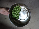 bit of greenpeas